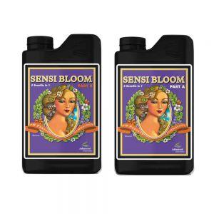 Sensi Bloom